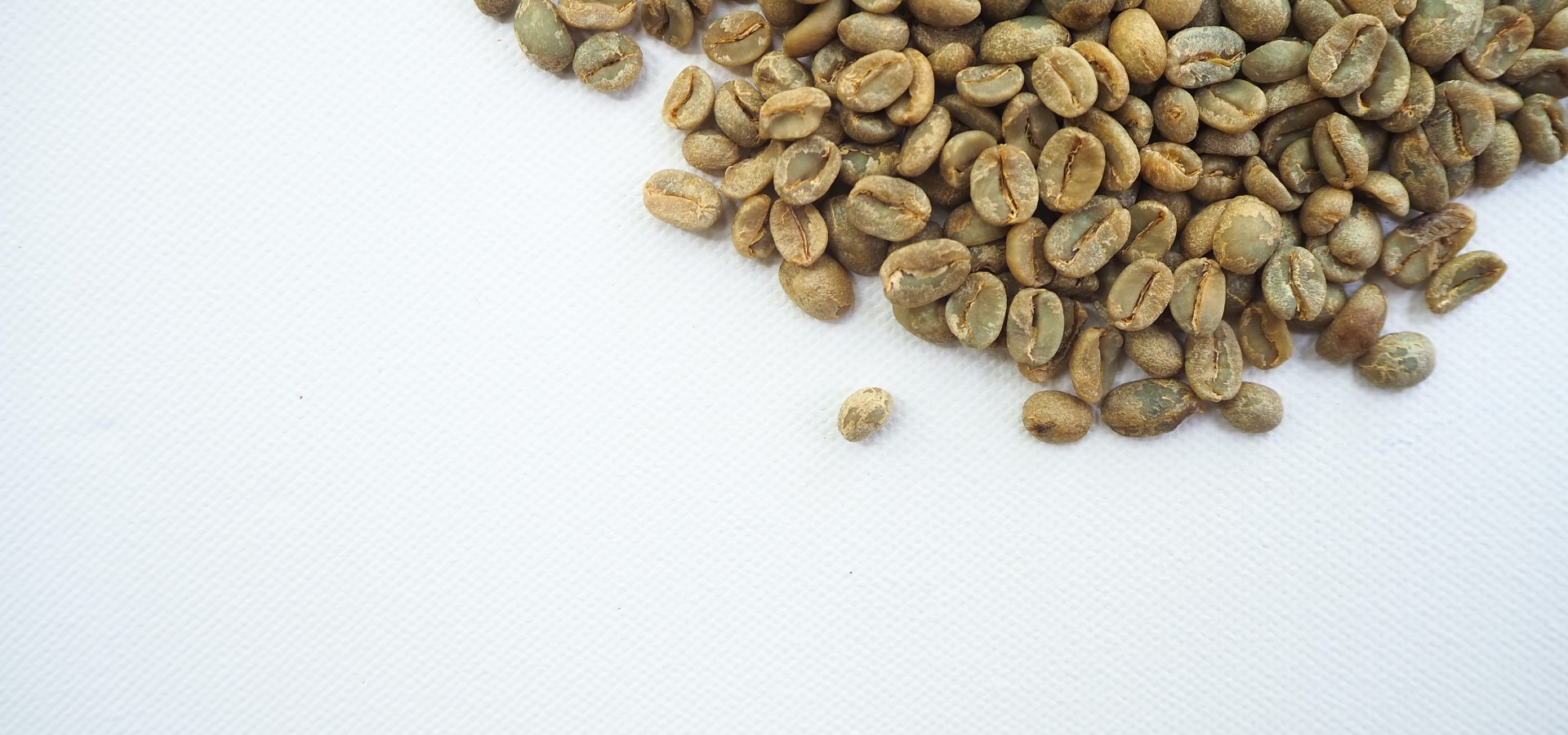 coffee-geek-1iL0lUqRWDY-unsplash (Custom)